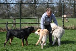 Medewerkster Marloes is graag met de dieren bezig en zorgt dat ze geen aandacht tekort komen